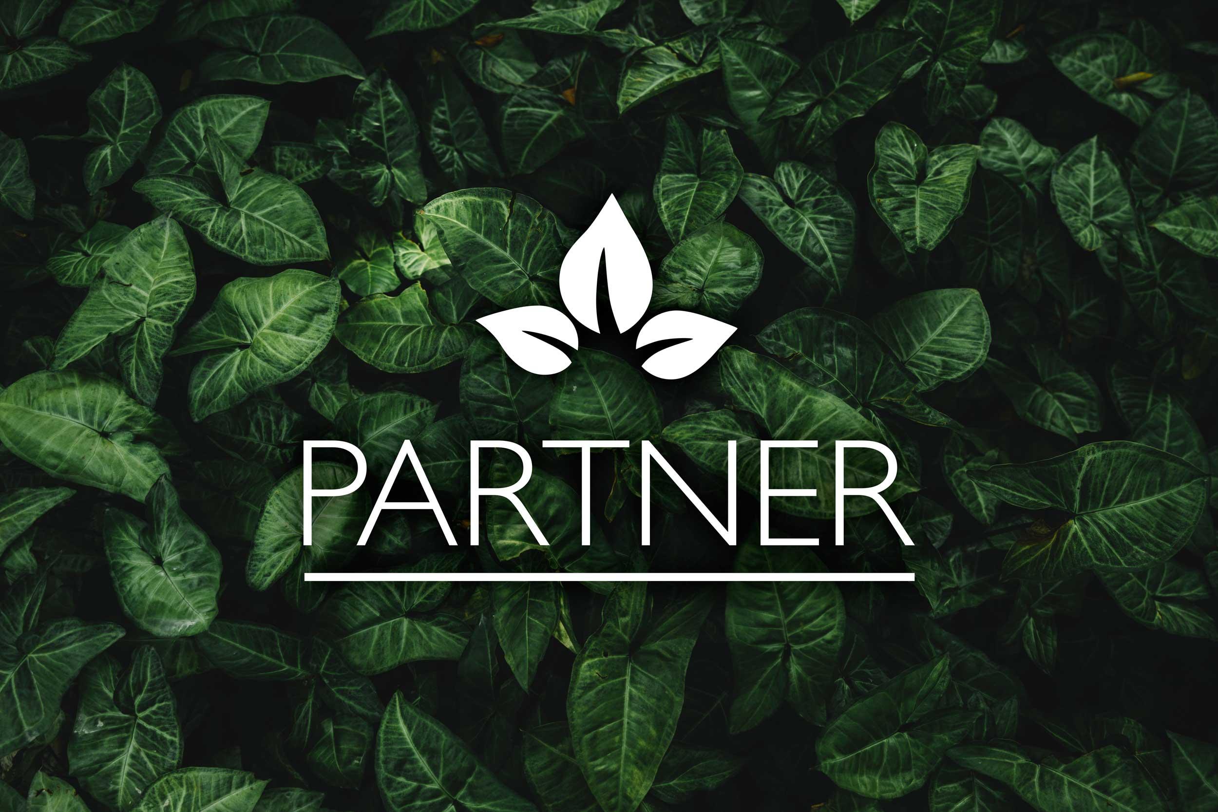 Saunapark Partner Motiv